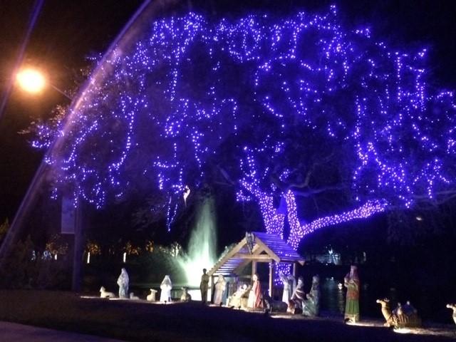 "Christmas Display ""Baby Jesus"""
